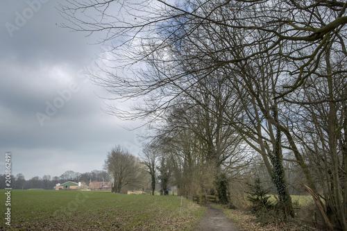 Fotobehang Donkergrijs Twente Netherlands. Vasse. Spring