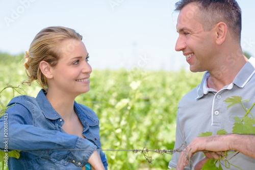 Foto Murales couple in the vines