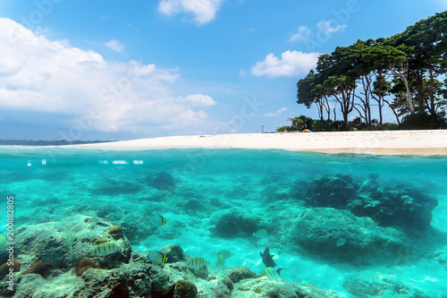 Keuken foto achterwand Tropical strand Andaman and Nicobar Islands. The concept of snorkeling and diving