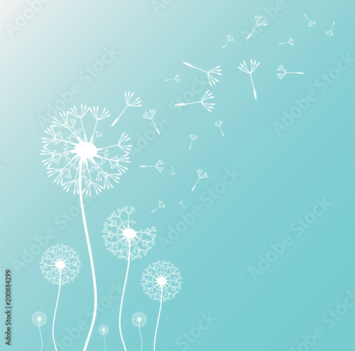 dandelion-blowing-silhouette-with-flying-dandelion-buds-vector-illustration