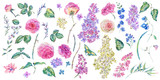 Set of vintage watercolor roses and lilacs - 200895267