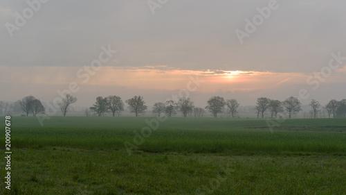 Fotobehang Donkergrijs Sonnenaufgang im Havelländischen Luch bei Nennhausen