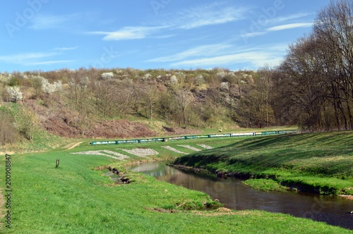 Aluminium Lente beautiful spring landscape with river, grass and blooming trees, Germany, Leipzig