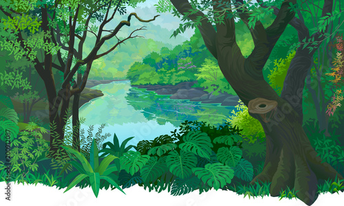 Dense, green tropical forest and a flowing fresh water river. © ActiveLines
