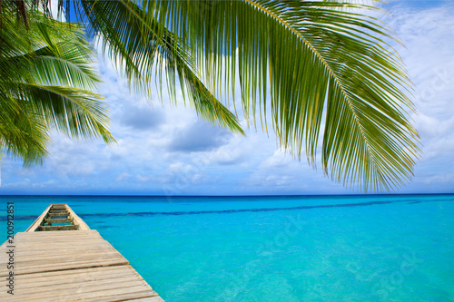 Perspective view of a wooden pier on the caribbean sea. - 200912851