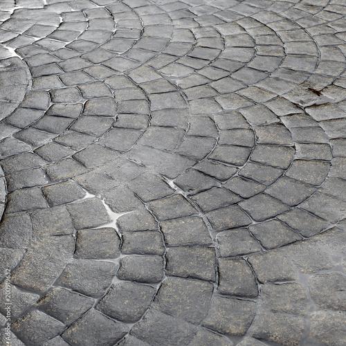 Street pavement after rain, urban background, texture