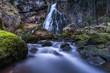 Gollinger Wasserfall1 - 200921846