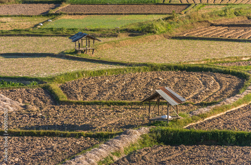 Two Cabin in Rice fields with light