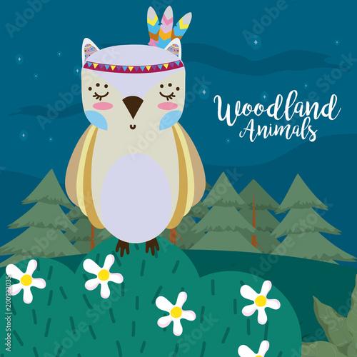 Owl woodland animals