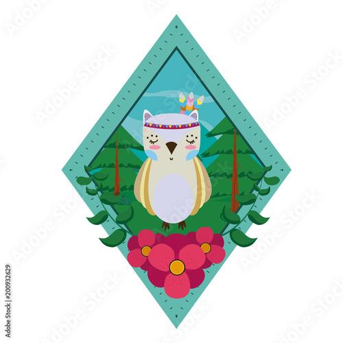 Owl wooland animals cartoon