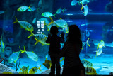 Young woman with child watch a fish in aquarium