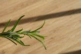 Rosemary herb close-up on cutting board - 200939039