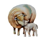 Sheeps.Mom and baby - 200945610