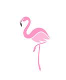 Flamingo. Logo