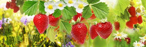summer berry.strawberries and raspberries - 200994648
