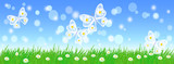 Summer landscape with fairy butterflies, meadow flowers and green grass