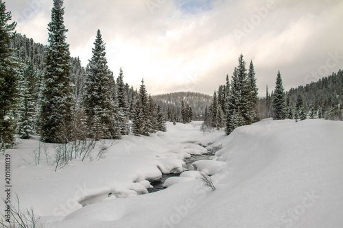 Foto Murales A river in a snowy forest.