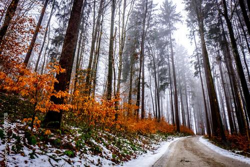 stara wiejska droga w zimie