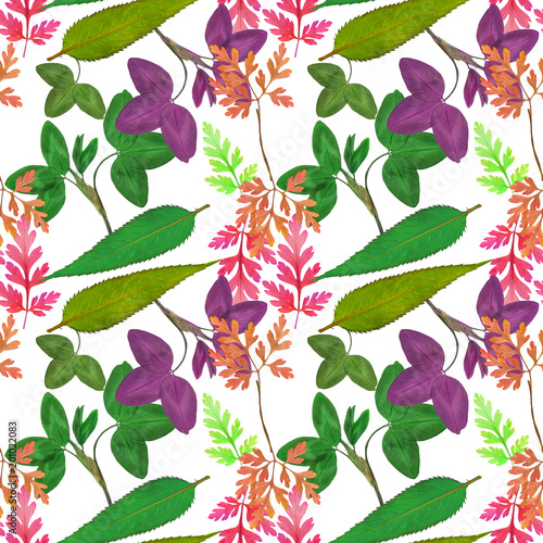 Leaves of herbs. Seamless pattern texture of flowers. Floral background, photo collage - 201022083