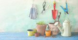 Gardening utensils, springtime gardening, seedlings and flower pots, free copy space