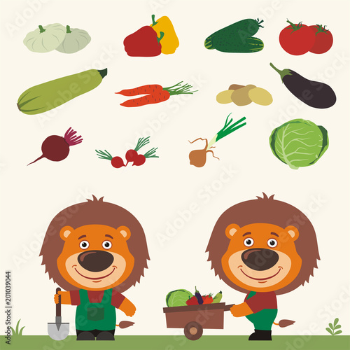 Set of isolated vegetables: squash, peppers, cucumbers, tomatoes, zucchini, carrots, potatoes, eggplant, beets, radishes, cabbage, onions. Two funny lions farmers.