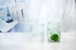 hand of scientist with glove pouring water in to the beaker with plant in bottle of tissue culture in science background