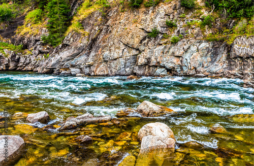 Tuinposter Honing Mountain forest river flowing scene