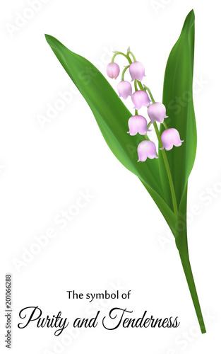 Realistyczne lilie doliny, symbol czystości i czułości