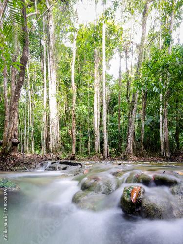 piękna siklawa w lesie przy Krabi, Tajlandia