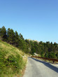 Straße im Nationalpark Biokovo - 201102422
