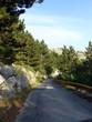 Straße im Nationalpark Biokovo - 201103013