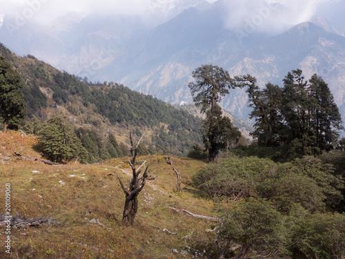 Foto Murales Eine Wanderung durch das Himalaya Gebiet von Uttarakhand in Indien