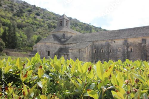 Plexiglas Grijs viaggiare in provenza