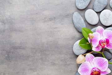 Beauty orchid on a gray background. Spa scene. © gitusik