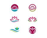 Beauty Vector lotus flowers design