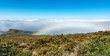 View over the clouds from the road to Haleakala Crater Maui Hawaii - 201142889