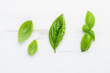Fresh sweet green basil leaves on  white shabby wooden background. Sweet basil leaves with flat lay . - 201146215