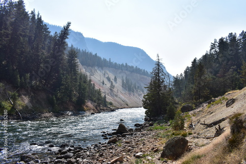 Foto op Aluminium Cappuccino Yellowstone River, Canyon Landscape, Running Water, Background