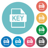 Private key file of SSL certification flat round icons - 201173433