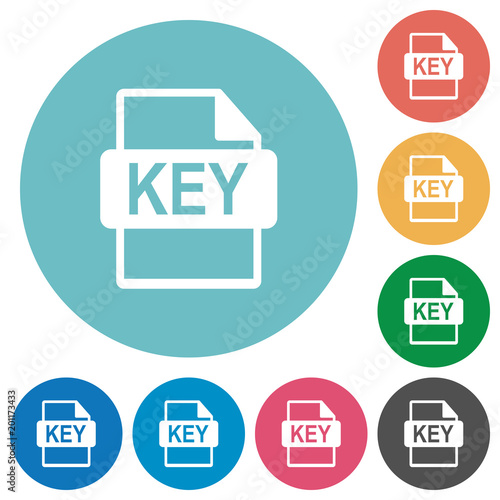 Private key file of SSL certification flat round icons