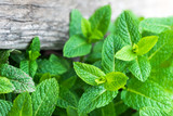 Fresh mint leaf,  lemon balm herb on wooden background with copyspace, close up. - 201180451