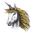 Unicorn horse sketch of fairy or heraldic animal - 201187218
