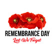 Remembrance day Lest We Forget vector poppy icons