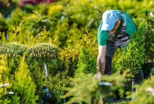 Foto Murales Gardener Buying New Plants