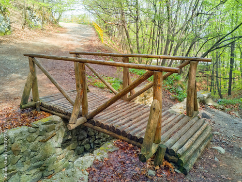 Foto Murales Wooden Bridge