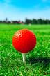 Golf red ball on tee, green grass field, blue sky, macro view.
