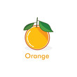 oranges fruit icon vector logo - 201214216