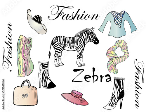 Objects for fashion design with Zebra pattern. Zebra, garments, bag on white background. Glamorous style. - 201248866