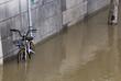 Crue dans La Seine