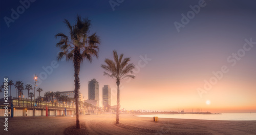 Foto op Canvas Barcelona Orange sunrset on beach of Barcelona with palm
